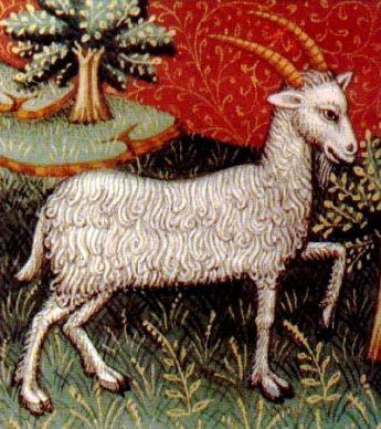 Capricornio, ilustración de un libro de astrología medieval, siglo XV, autor desconocido