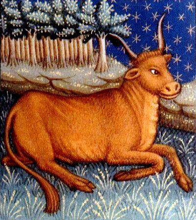 Tauro, reproducción de un libro de astrología medieval, siglo XV, autor desconocido