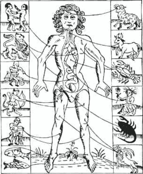 Hombre zodiacal, atribuyendo los signos astrológicos diversas partes del cuerpo. A partir de un grabado en un almanaque de 1702, probablemente reproduce una imagen anterior.