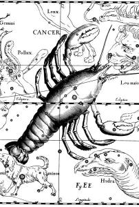 Constelación de Cáncer, Uranografíia de Johannes Hevelius, 1690