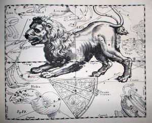 Constelación de Leo, Uranografíia de Johannes Hevelius, 1690