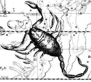 Constelación de Escorpio, Uranografíia de Johannes Hevelius, 1690