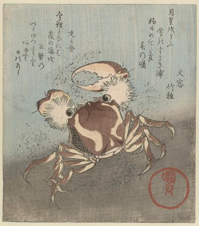 Cáncer. Bunbunsha Kanikomaru (1780-1837). 'Cangrejo discurre por agua,' un cangrejo grande, con pinzas, abiertos, corre a lo largo de la Costanera. El cangrejo fue utilizado a menudo como un emblema personal del poeta Con dos poemas. Rijksmuseum Amsterdamm. Wikimedia Commons 11 junio 2014